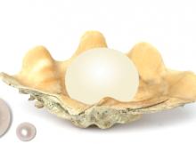Gemstone Pearl